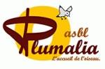 Plumalia ASBL