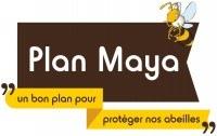 plan Maya